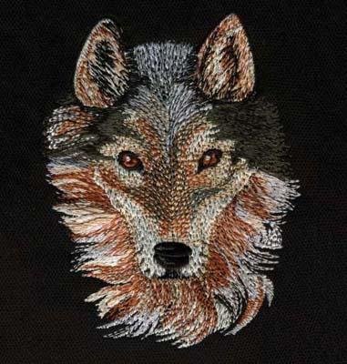 Born Free Wolf